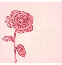 Flower invitation floral vintage card vector