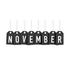 black november tags vector image