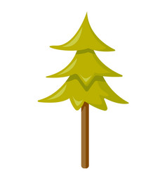 Fir tree cartoon vector