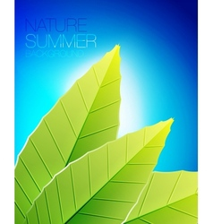 Green nature leaf background vector image