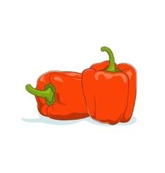 Orange Bell Pepper Isolated on White vector