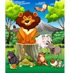 Wild animals together in the field vector