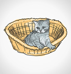 Kitten in Basket vector image vector image