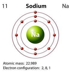 Diagram representation of the element sodium vector image