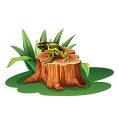 A frog above the stump vector