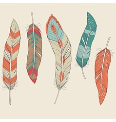 colorful set of different feathers vector image