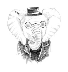 Hand drawn portrait elephant with accessories vector