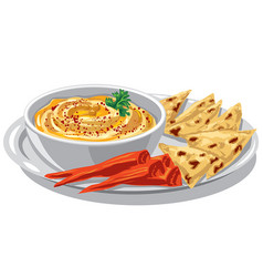 humus with pita on plate vector image