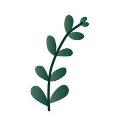 leaf branch in green color vector image