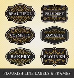 set flourish calligraphy frames and labels vector image