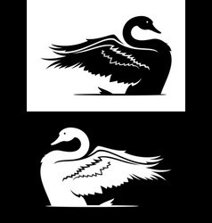 swan taking off silhouette vector image