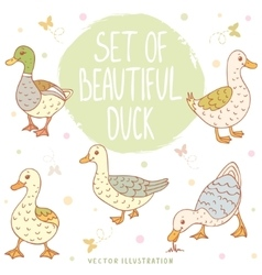 ducks set vector image vector image