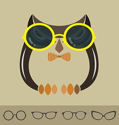 images of owl and glasses vector image