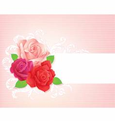 rose banner vector image vector image