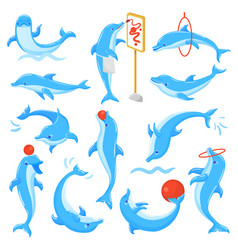 dolphin seafish character drawing or vector image