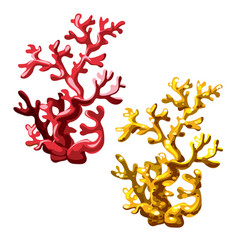 set red and golden corals isolated on white vector image
