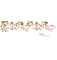 spring nature panorama with a pink blooming vector image