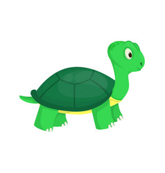 Turtle animal ocean green nature wildlife sea vector