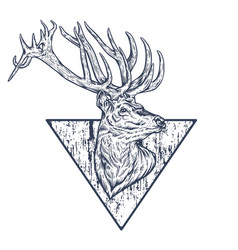 wild deer black and white vector image vector image