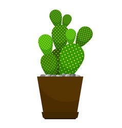 Cactus flower pot vector