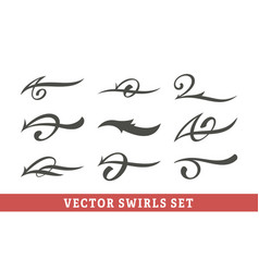 calligraphic swirls set vector image
