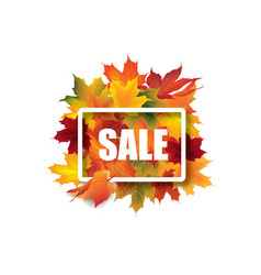fall leaves sale sign autumn leaf frame nature vector image