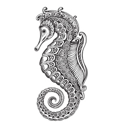 Hand drawn graphic ornate seahorse vector