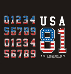 Number texture flag american vector