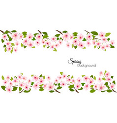 spring nature frame with a pink blooming cherry vector image