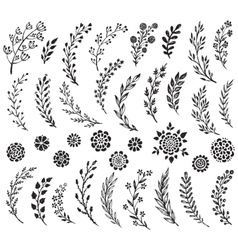 Big set of hand drawn flowers and branches vector image vector image