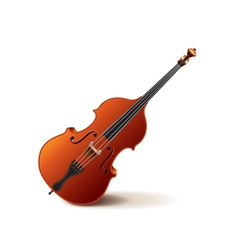 Contrabass isolated on white vector image
