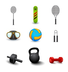 icon of sports equipment vector image
