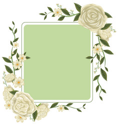 border template with white roses vector image