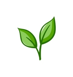 Eco Icon Green leaves vector image vector image