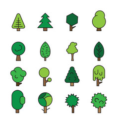 set forest trees evergreens coniferous trees and vector image vector image
