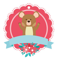 bear round icon vector image