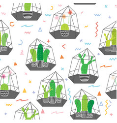 cactuses in glass terrariums with geometric vector image