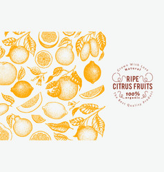 Citrus fruits banner template hand drawn vector