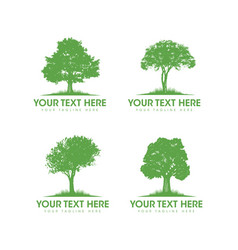 Eco plant care arborist tree removal and forestry vector