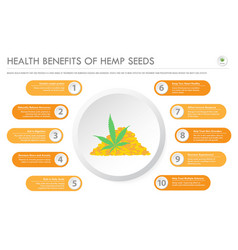 Health benefits hemp seeds horizontal business vector
