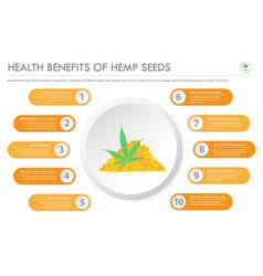 health benefits hemp seeds horizontal business vector image