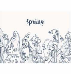 monochrome horizontal backdrop with lily the vector image