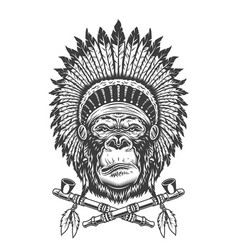 Native american indian chief gorilla head vector