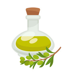 Olive oil in bottle flat isolated icon vector