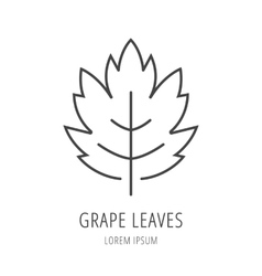 Simple Logo Template Grape Leaf vector