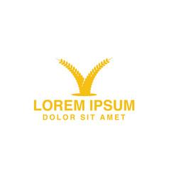 wheat grain agriculture farm logo designs vector image