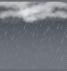 rain 3d with falling water vector image