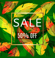 Autumn fall leaves with typography sale for shops vector