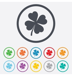 clover with four leaves sign st patrick symbol vector image
