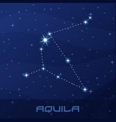 Constellation aquila eagle night star sky vector